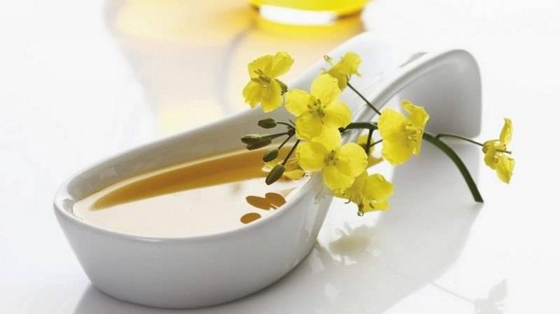 Рыжиковое масло: польза и вред, как принимать, отзывы