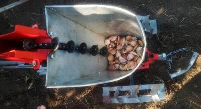 Сеялка для чеснока: для бульбочек, для посадки, к мотоблоку, ручная и своими руками