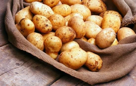 Сырой картофель, польза и вред для организма человека