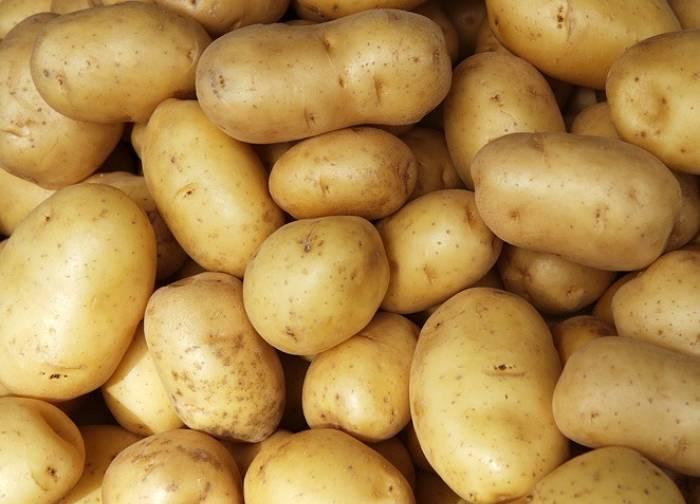Сорт картофеля армада: характеристики и сравнение с другими в таблицах, выращивание
