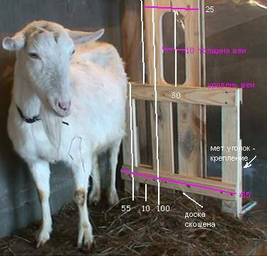 Станок для доения козы своими руками: чертежи