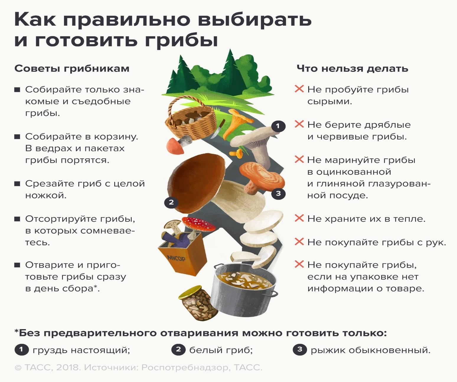 Отравление ядовитыми грибами. симптомы и признаки. первая помощь при отравлении, что делать? профилактика отравлений грибами. :: polismed.com