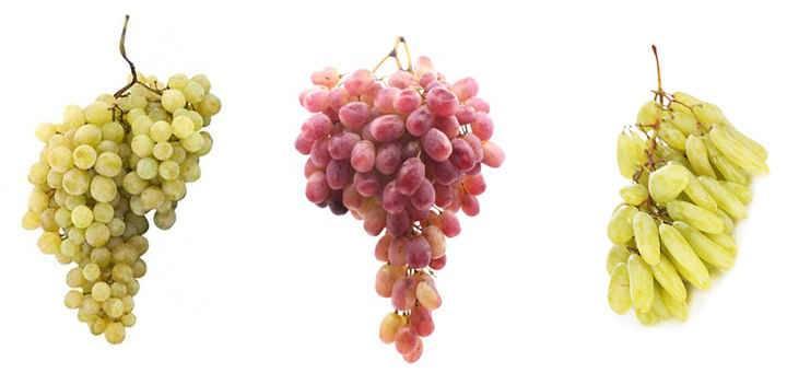 Виноград во время диеты: можно или нельзя лакомство?