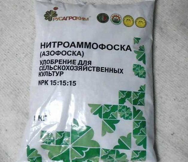 ✅ удобрение при посадке томатов: навоз, нитроаммофоска, хлебная подкормка помидор - tehnomir32.ru