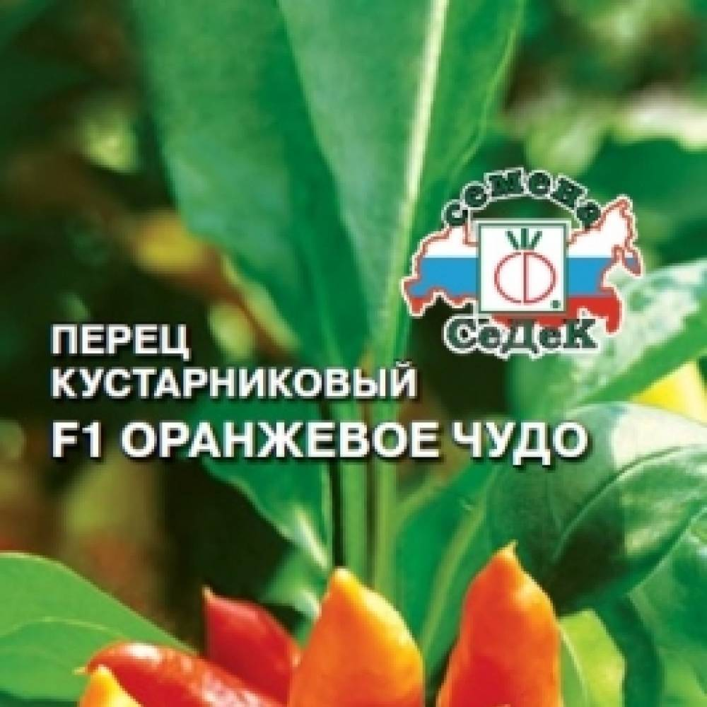 Перец калифорнийское чудо, ласточка, белозерка, оранжевое чудо, геракл, джипси и другие сорта с фото selo.guru — интернет портал о сельском хозяйстве