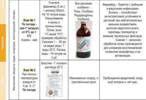 Фармайод: инструкция по применению для обработки растений, теплиц, почвы