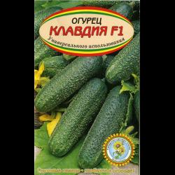 Сорт огурцов клавдия f1: характеристика, описание с фото, отзывы