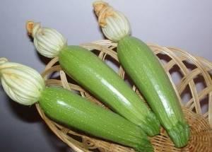 ✅ кабачок арал f1: описание и характеристика сорта, посадка семян и уход, фото - tehnoyug.com