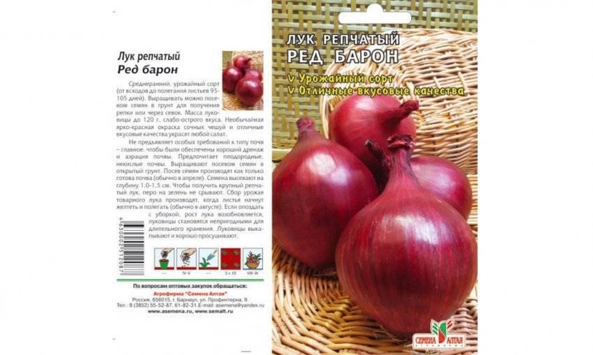 Лук ред барон красный репчатый: характеристики, описание сорта, посадка севка