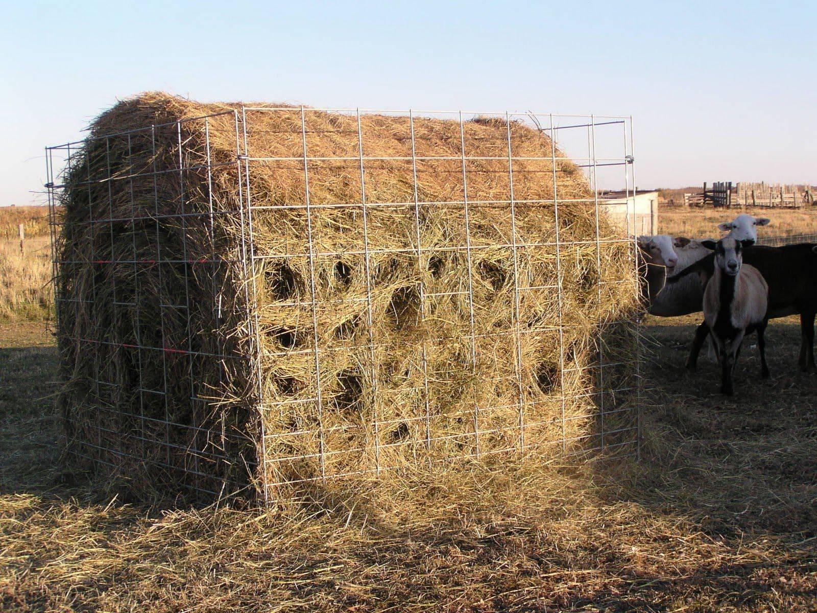 Как сделать кормушку для коров своими руками, под сено