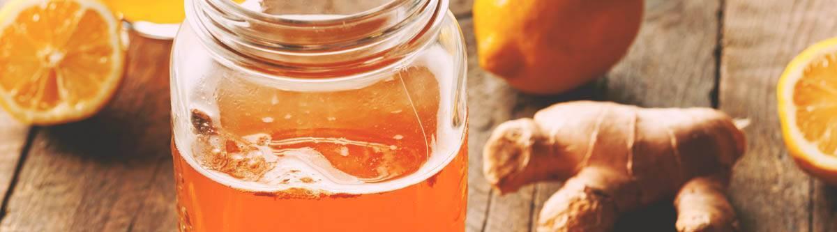 Чайный гриб: полезные свойства и противопоказания, употребление при гастрите, чем полезен для огорода, как выращивать и ухаживать, отзывы