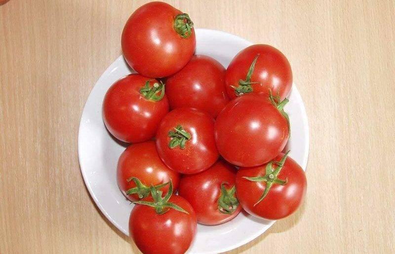 Томат ричи: описание, особенности выращивания и ухода, фото