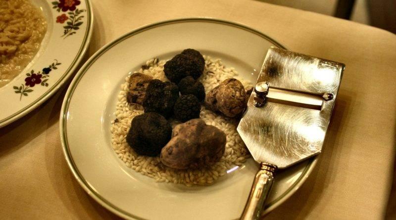 Трюфель летний (tuber aestivum) или русский черный: фото, описание, применение в косметике и как готовить гриб