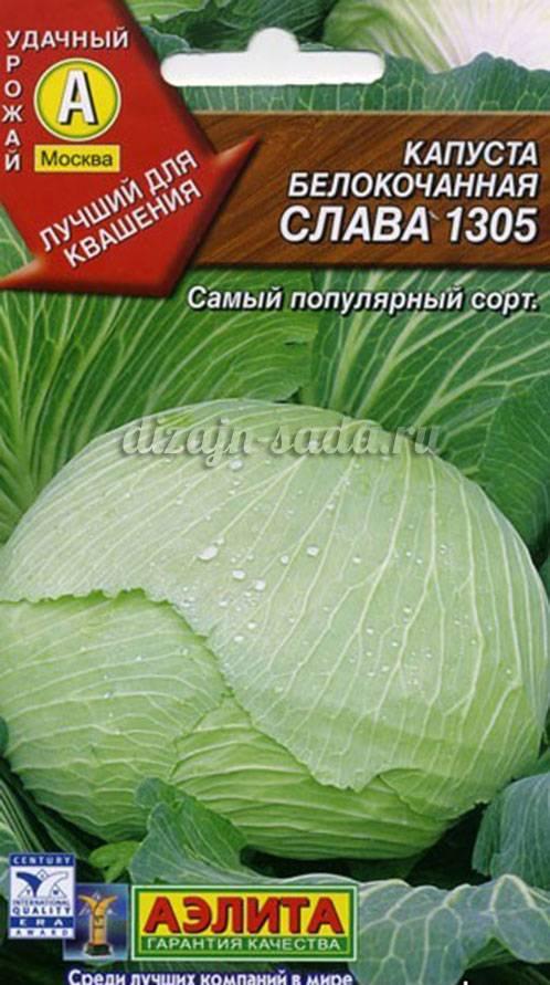 Лучшие сорта капусты кольраби с фото, описанием, отзывы, ранние и поздние