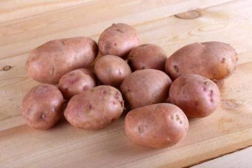 Картофель рассыпчатый свитанок киевский