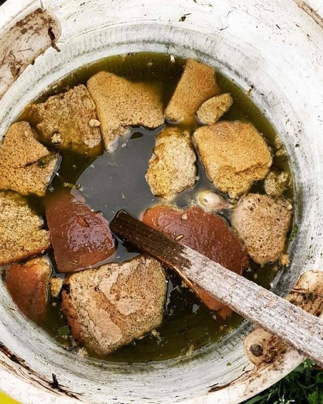 Хлебная подкормка для огурцов: как приготовить раствор, удобрение раствором