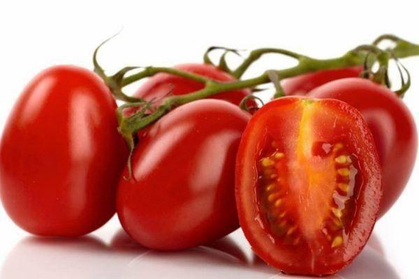 Универсальные помидоры сорта рома - всё о землеводстве