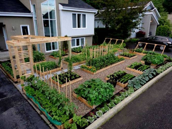 Планировка участка 6 соток: 34 фото дачных проектов, ландшафтный дизайн, делаем своими руками, обустройство садовой земли, примеры
