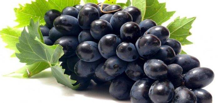 Виноград чарли: характеристика и описание сорта, посадка и уход