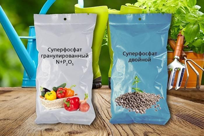 Фосфорные удобрения: их значение и применение, виды