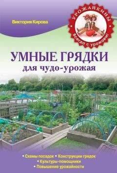 Читать книгу минимум работы, максимум урожая! метод игоря лядова для любой почвы игоря лядова : онлайн чтение - страница 7
