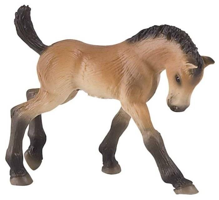 Читать книгу лошади. породы, питание, содержание. практическое руководство константина голубева : онлайн чтение - страница 6