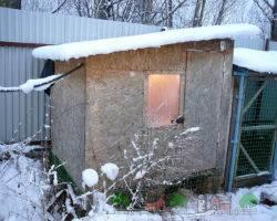 Утепление курятника на зиму своими руками технология, фото, видео