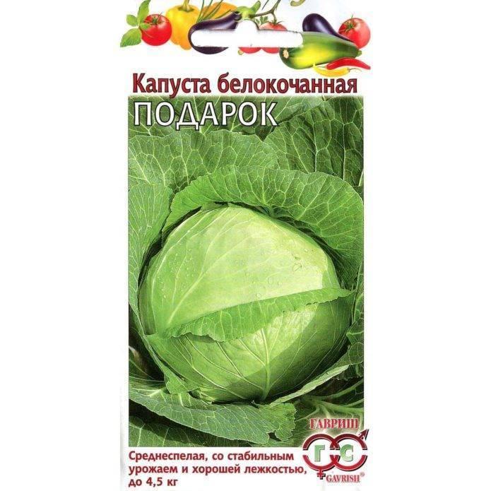 Выращивание капусты сорта подарок