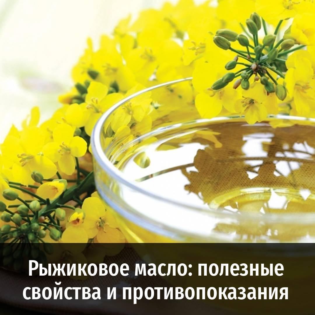 Рыжиковое масло: свойства, характеристики, применение
