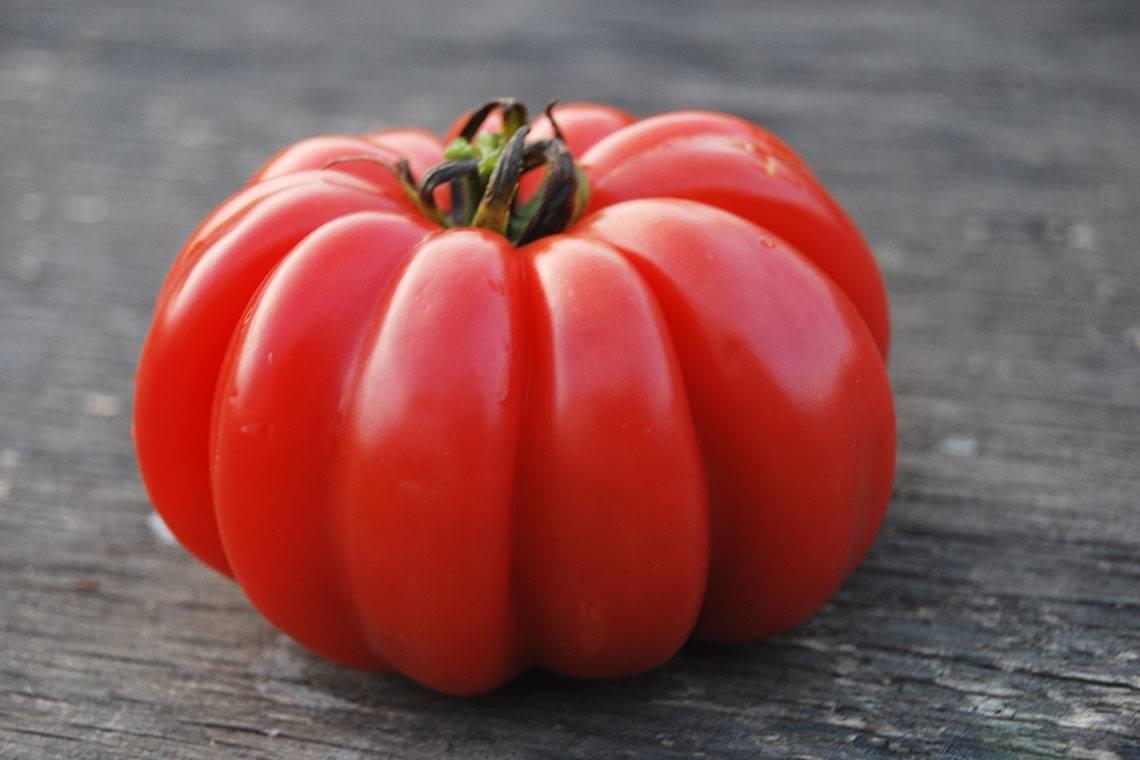 Помидор: это фрукт, овощ или ягода