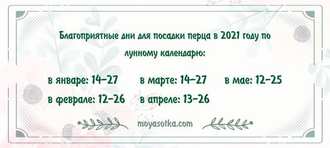 Посадка перца в 2021 году на рассаду и в теплицу: сроки посадки, календарь