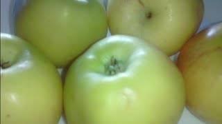 Как заморозить яблоки на зиму: полезные советы