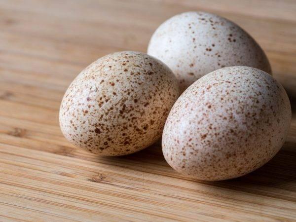 Гусиные яйца: польза и вред, стоимость