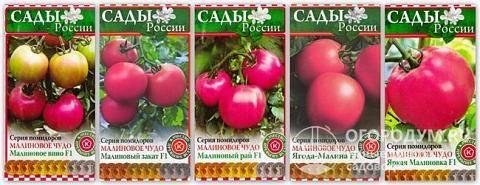 """Томат """"малиновое чудо"""": описание, характеристики сорта, особенности ухода русский фермер"""