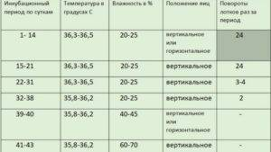 Инкубация индюшиных яиц в домашних условиях • режимы и таблица