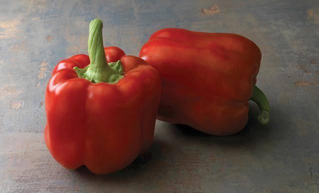 Перец красный бык - характеристика и описание сорта, фото, урожайность, достоинства, отзывы