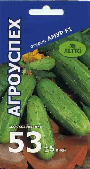 Огурец амур f1: описание и характеристика сорта, технология выращивания, видео и фото