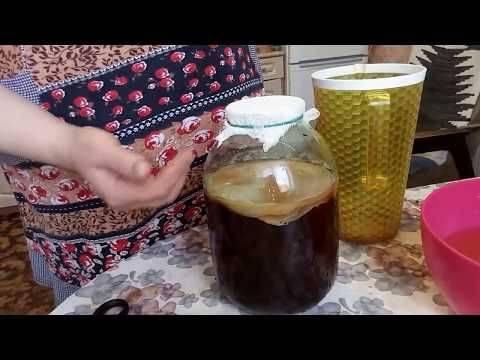 Как просто и быстро самому вырастить чайный гриб: 2 лучших рецепта