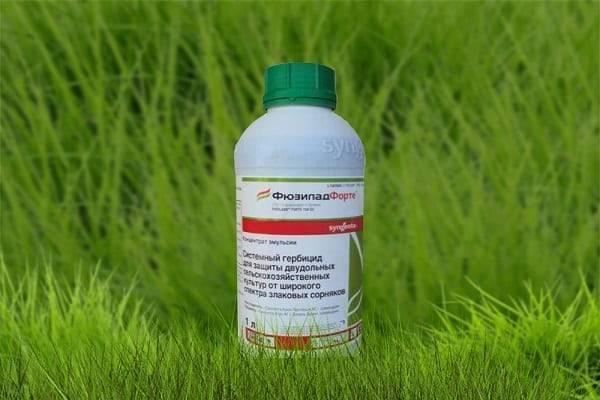 Гербициды для чеснока. защита чеснока от сорняков. — ukrup ™ (украп) — чеснок от производителя