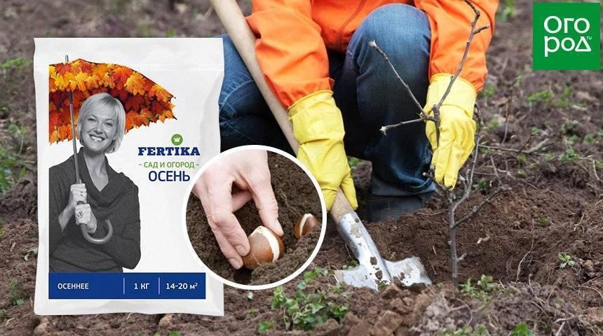 Описание и применение удобрений fertika