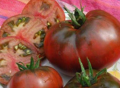 Описание и характеристика сорта томата шоколадное чудо
