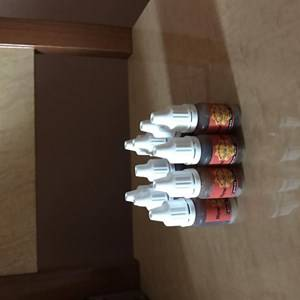Польза, лечебные свойства и противопоказания к употреблению трюфеля