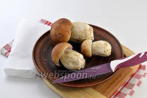 – термическая обработка белых свежих грибов перед приготовлением: способы подготовки после сбора к жарке, заморозке