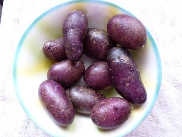 Фиолетовый картофель - описание популярных сортов с фото, особенности выращивания и ухода, плюсы и минусы