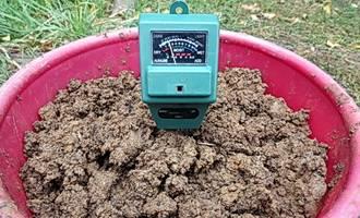 Как раскислить почву на огороде весной и осенью