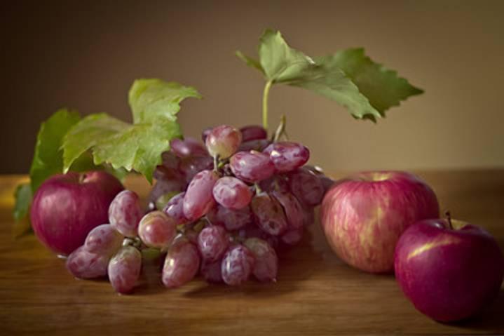 Выращивание нового гибридного сорта винограда изюминка