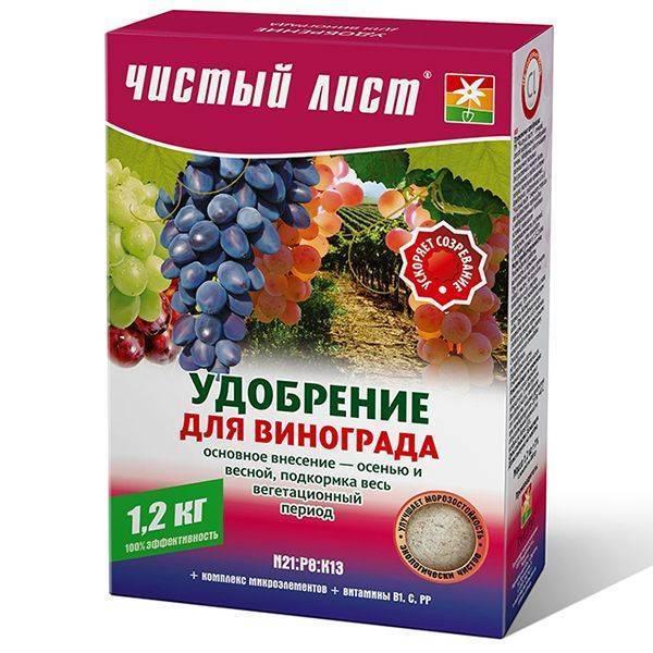 """Виноград """"изюминка"""": описание сорта, фото, отзывы"""