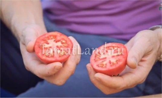 Томат гелена f1: характеристика и описание сорта, отзывы об урожайности помидоров, фото семян