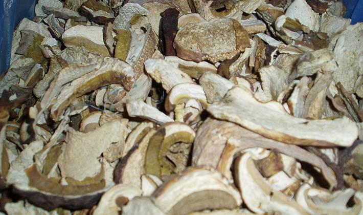 Как сушить белые грибы в домашних условиях: духовка и микроволновка