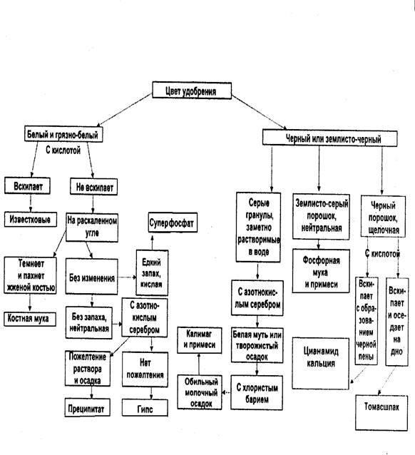 ?кристалон» — описание удобрения и способ применения комплексного состава